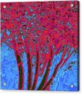 Jelks Fingerling 7 Acrylic Print