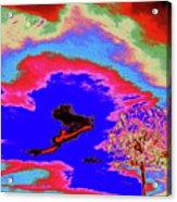 Jelks Pine 12 Acrylic Print