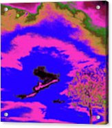 Jelks Pine 14 Acrylic Print