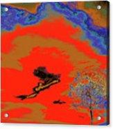 Jelks Pine 16 Acrylic Print