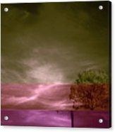 Jelks Pine 2 Acrylic Print