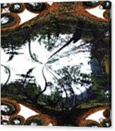Jellin Acrylic Print