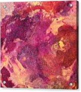 Jellyfish 2 Acrylic Print