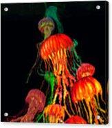 Jellys3 Acrylic Print