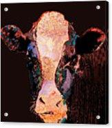 Jemima The Cow Acrylic Print