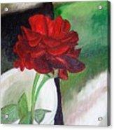 Jennifers Rose Acrylic Print