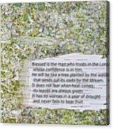 Jeremiah 17 Acrylic Print