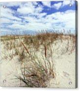 Jersey Dune I Acrylic Print