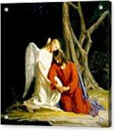 Jesus In Gethsemane Acrylic Print