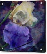 Jeweled Iris Acrylic Print