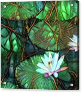 Jeweled Water Lilies Acrylic Print