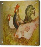Joanna'sthree Chickens Acrylic Print
