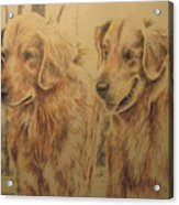 Joe's Dogs Acrylic Print