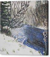 Johnson Vermont In Spring Snow Storm Acrylic Print