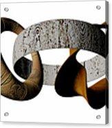 Join Circles Acrylic Print