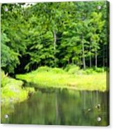 Jones Mill Run Creek Acrylic Print