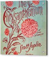 Joplin: Chrysanthemum Acrylic Print