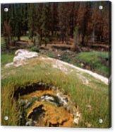 Jordan Hot Springs Acrylic Print