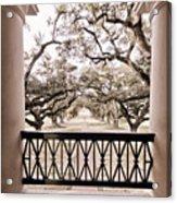 Josephine's View Of Oak Alley Plantation Acrylic Print