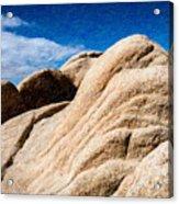 Joshua Tree Ca 9 Acrylic Print