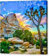 Joshua Tree Magic Hour Hdr Acrylic Print