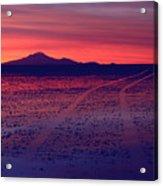 Journey In A Purple Dreamland Acrylic Print