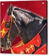 Jouster Red Acrylic Print