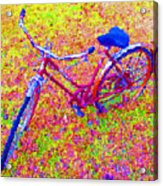 Joy, The Bike Ride Acrylic Print