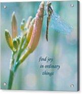 Joy In Ordinary Things Acrylic Print