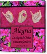 Joy Of The Lord Spanish Acrylic Print