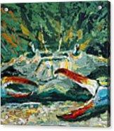 Jubilee Jewel Acrylic Print
