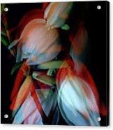 Jukka Flowers Acrylic Print