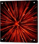 July 4 Fireworks Acrylic Print