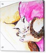 July Kitty In Rachaels Lap Acrylic Print