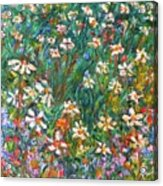 Jumbled Up Wildflowers Acrylic Print