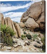 Jumbo Rocks Acrylic Print