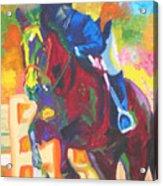 Jump Off Acrylic Print