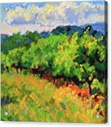 June Orchard Acrylic Print