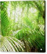 Jungle Abstract 1 Acrylic Print