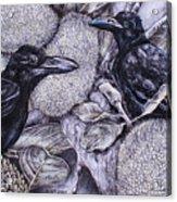 Jungle Crows On Jackfruit Acrylic Print