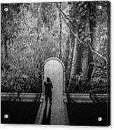 Jungle Entrance Acrylic Print