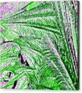 Jungle Flora Acrylic Print