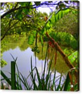 Jungle Garden View Acrylic Print