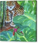 Jungle Jaguar Acrylic Print