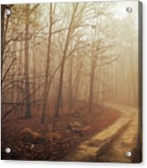 Jungle Journey - The Path Sepia Acrylic Print