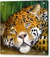 Jungle King Acrylic Print