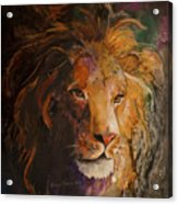 Jungle Lion Acrylic Print