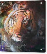 Jungle Tiger Acrylic Print