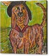 Junk Yard Dog Acrylic Print