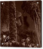 Juraissic Palm Number 1 Acrylic Print